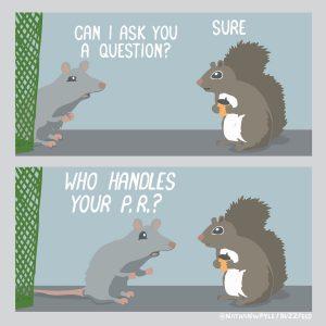 PR squirrels